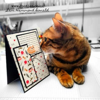 Playful Pets Layered Card with Kitty Assistance!