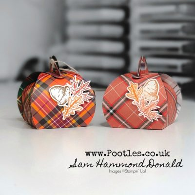 Adorable Mini Curvy Keepsake Tartan Treats