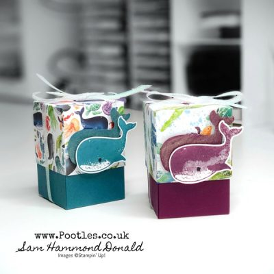 How to make a cute favour box using Whale of a Time!