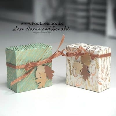 Easy Mini Gift Box Tutorial using Gilded Autumn