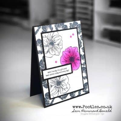 Monochrome Floral Essence with a Pow Colour Accent