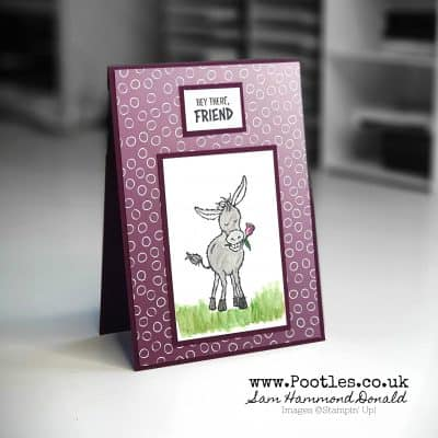 Sale a Bration Sneak Peek. Oh So Ombre Darling Donkey!
