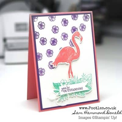 Friendly Flamingo DistINKtive Stamping Card Idea