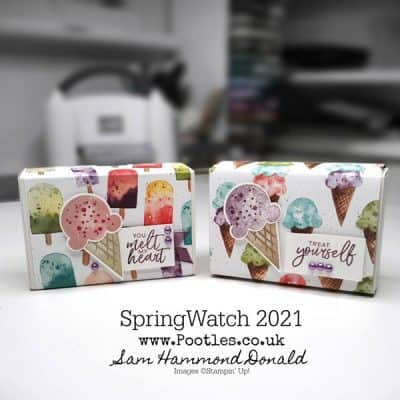 SpringWatch 2021 Ice Cream Corner Treat Box
