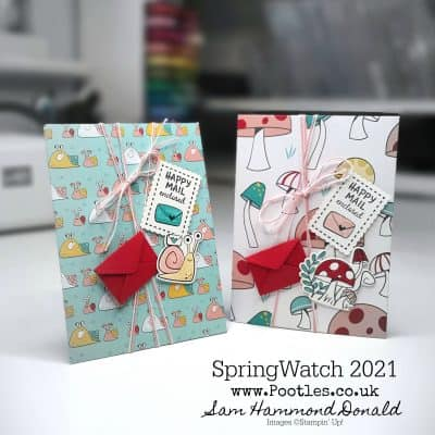 SpringWatch 2021 Snail Mail Card Bag Envelope Tutorial