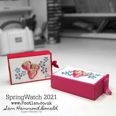 SpringWatch 2021 Sweet Strawberry Fold Over Box Tutorial