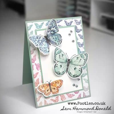 Butterfly Brilliance Paper Showcase Weekend