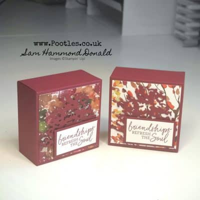 Sneak Peek – How To Make a Great Gift Box Using Beauty of the Earth
