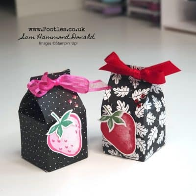 Sweet Strawberry Tiny Milk Carton Tutorial