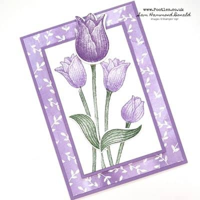 Timeless Tulips Case-A-Demo Cindy Ehlers