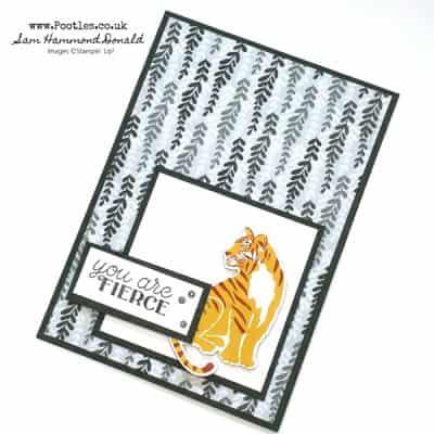 Wild Cats Fierce Card Idea